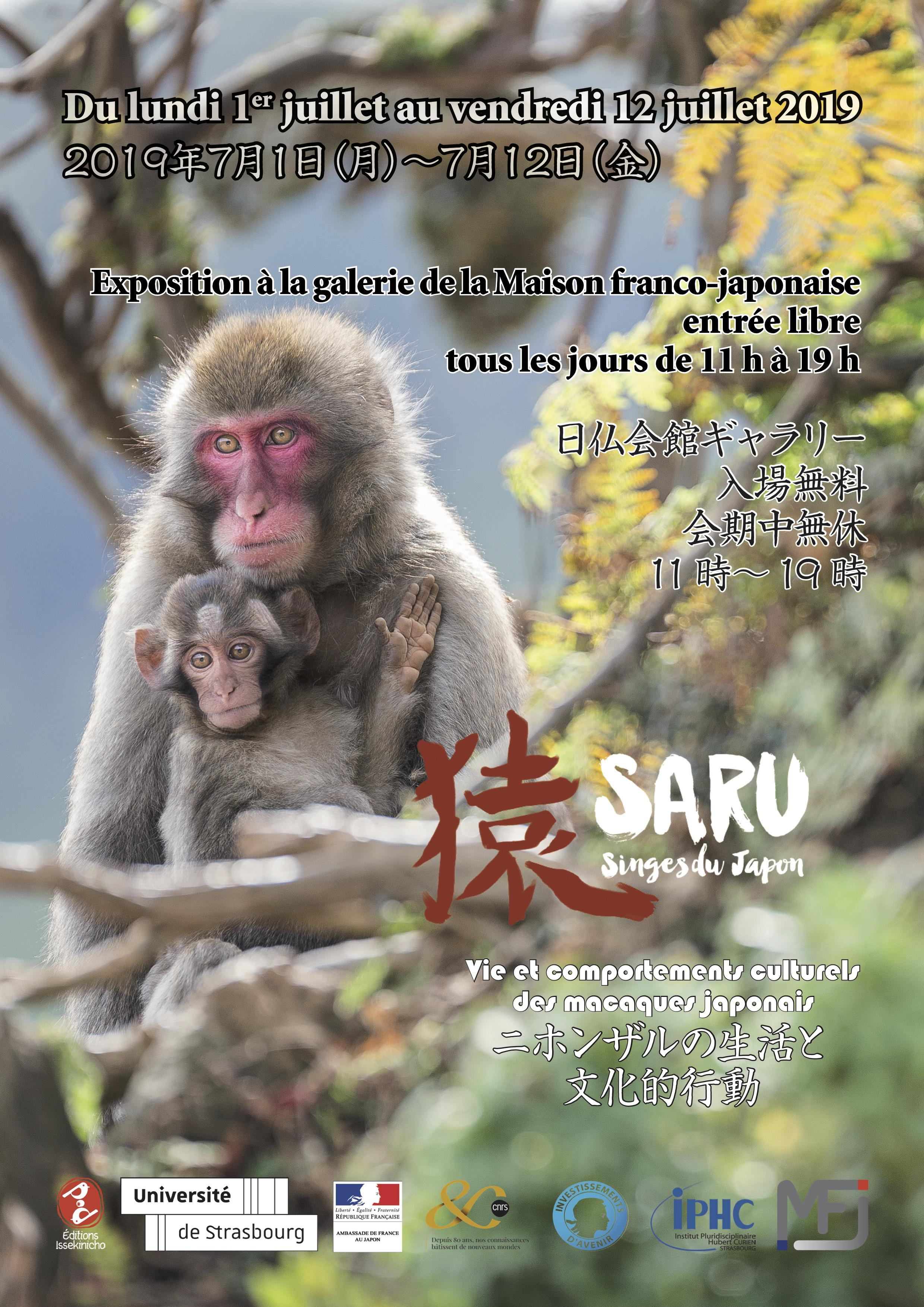 2019-07-01_SARU_Flyer.jpg